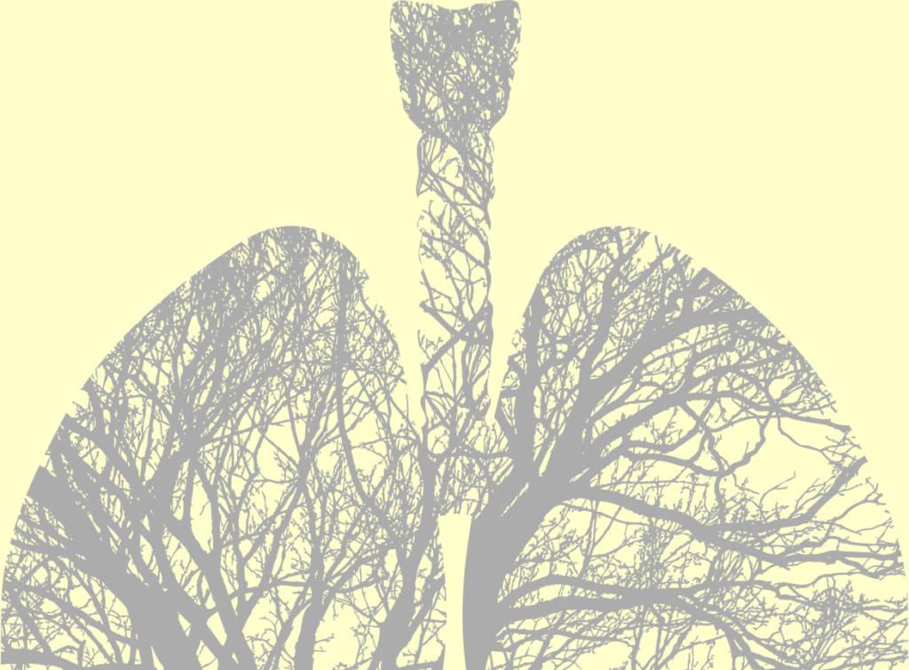 Vad är Cystisk fibros – CF